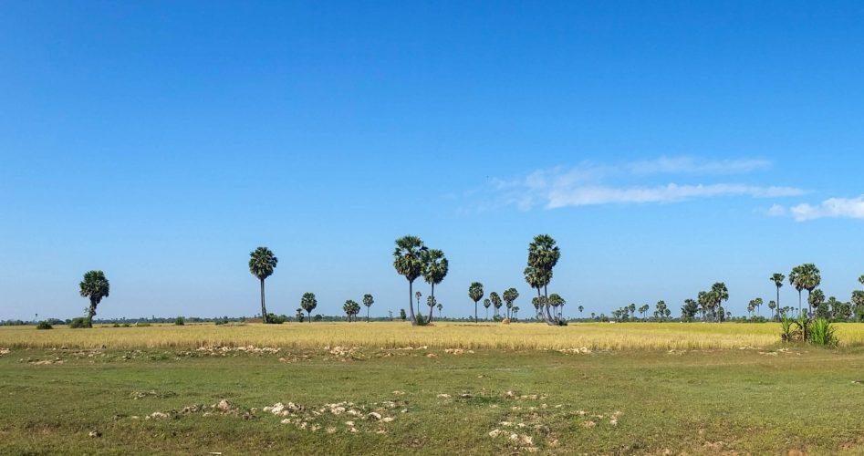 https://www.destinationcambodge.com/wp-content/uploads/2021/01/quand-aller-au-cambodge-947x500-1.jpeg